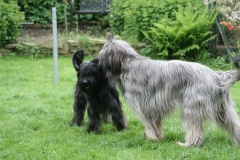 Baika und Max