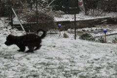 Schnee Erfahrungen