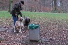 Spaziergang im Esserner Wald / Spaziergang im Esserner Wald