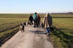 Hundesportverein Holzwickede