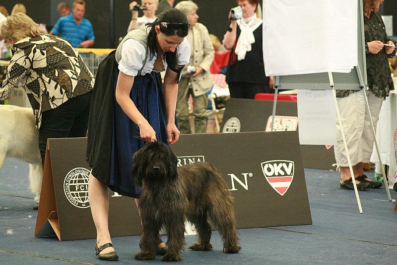 Benga Austrian Champion