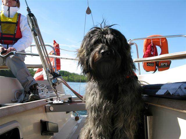 Andor 1 year sailing