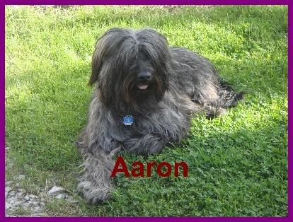 Aaron 1 Jahr