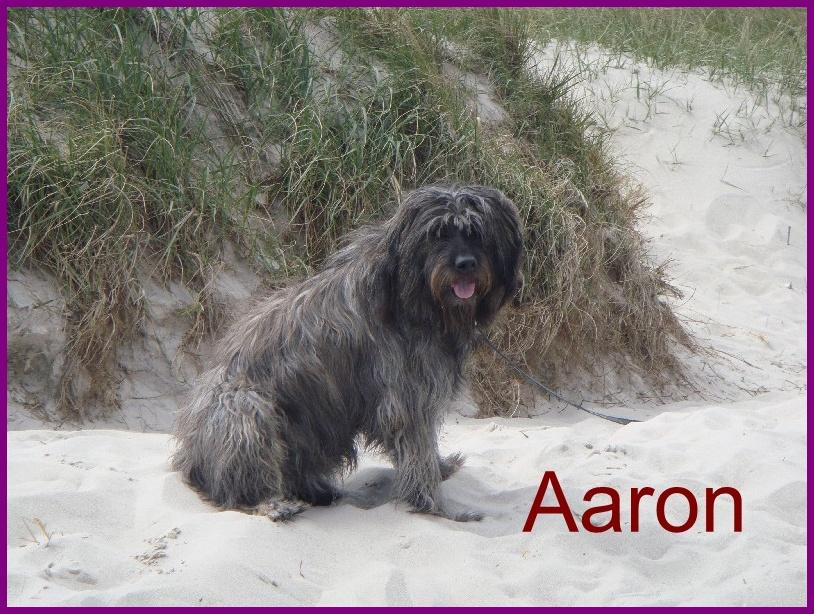 Aaron 2 Jahre