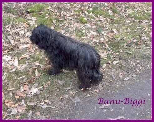 Banu 8 Jahre