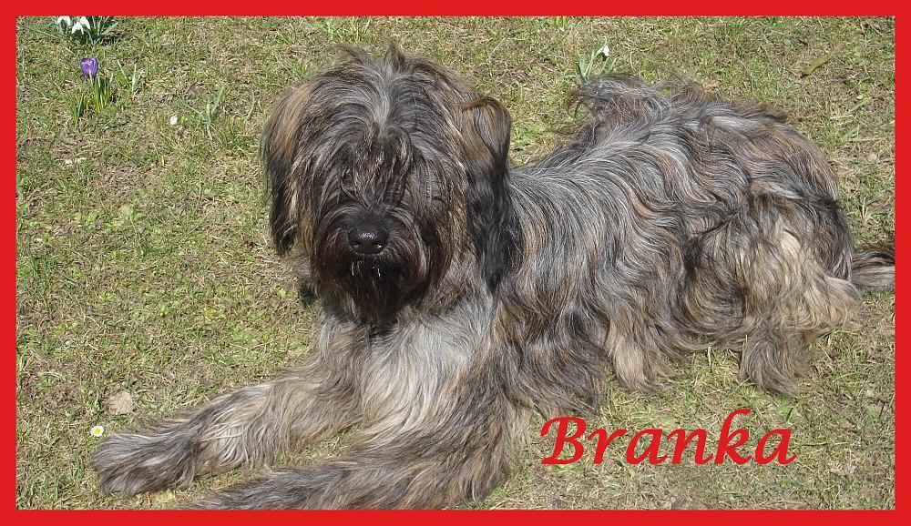 Branka 1 Jahr