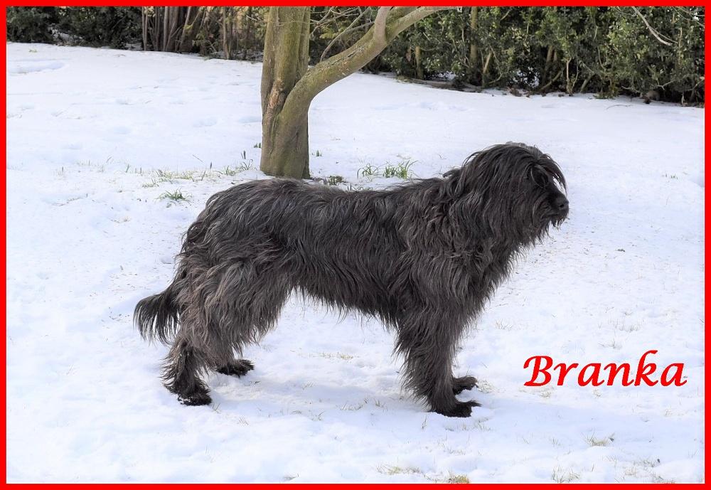 Branka 8 Jahre