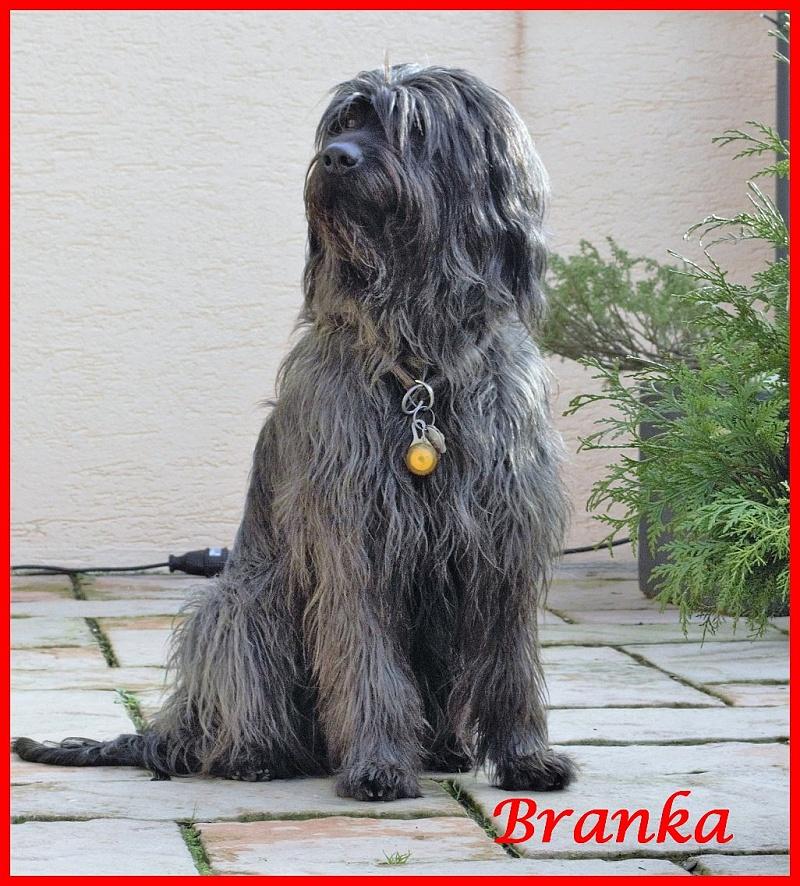 Branka 6 Jahre