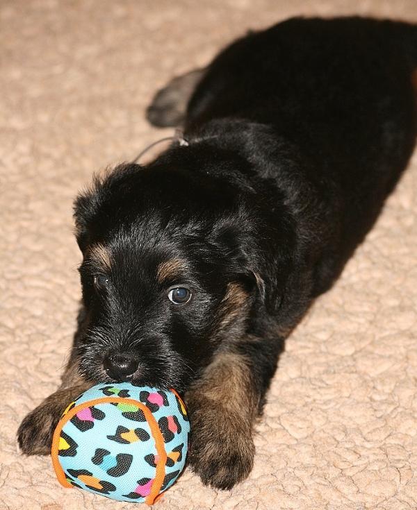 Ciwana with a ball