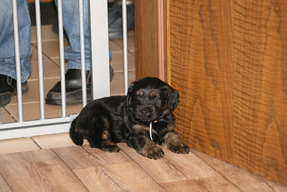 Ciwana waits, she wants to be at the floor