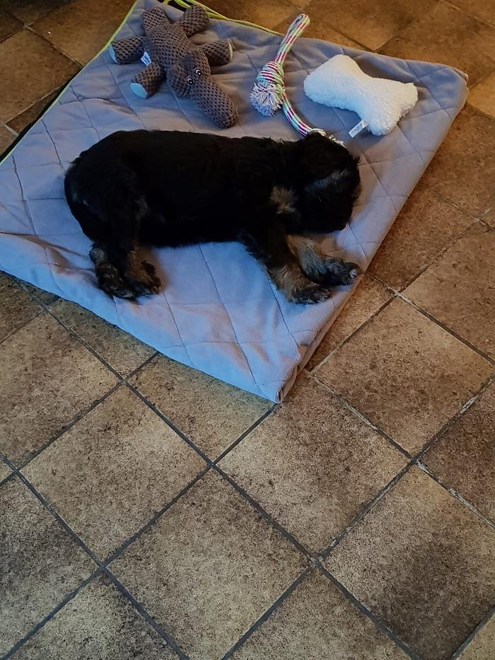 Ciwana on her mat