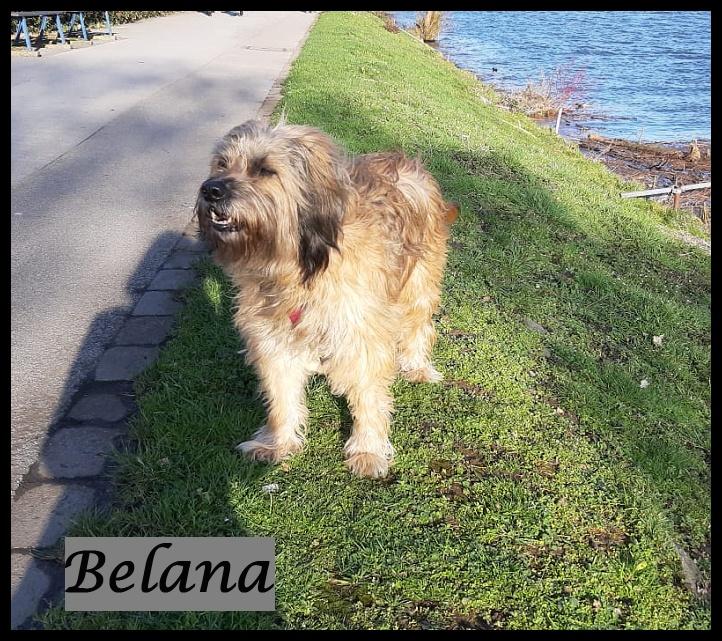 Belana 10 Years